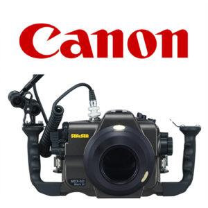 Sea & sea System set up Canon