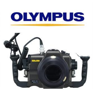 Sea & sea System set up olympus